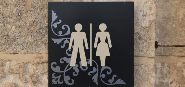 Gender Inequality among Political Elites
