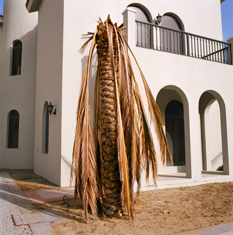 "The Palm master-planned community | Dubai, UAE. (From the series ""ANONYMIZATION"".)"