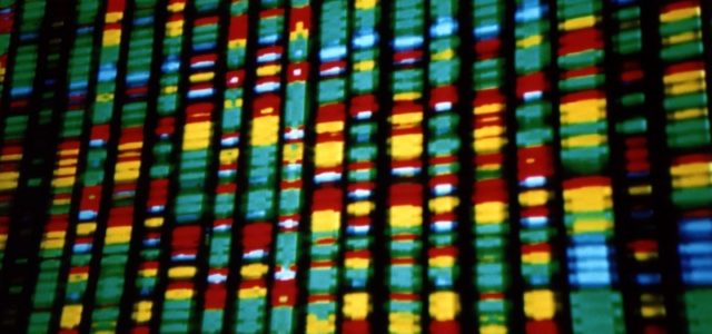 The promise of Indigenous epigenetics