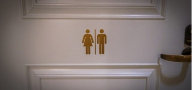 Focus: Trans and the contradictions of gender
