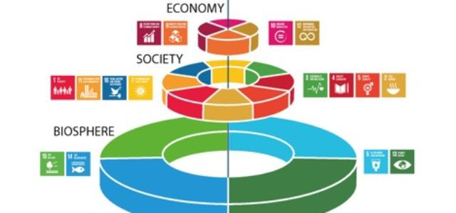 A Social Scientist Looks at the UN Sustainable Development Goals