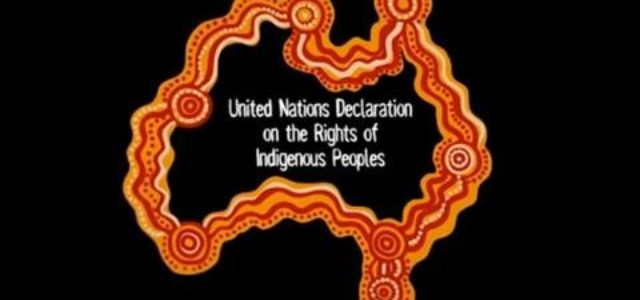 Liberal Citizenship, Sovereignty, Democracy and the UN Declaration on the Rights of Indigenous Peoples