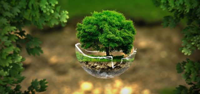 Covid-19: One Part of an Ecological Public Health Crisis