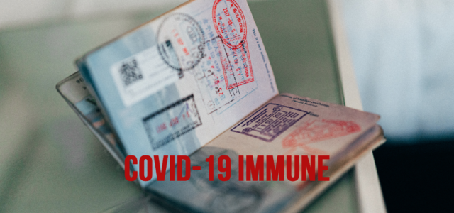 """Imagining Life with """"Immunity Passports"""": Managing Risk during a Pandemic"""